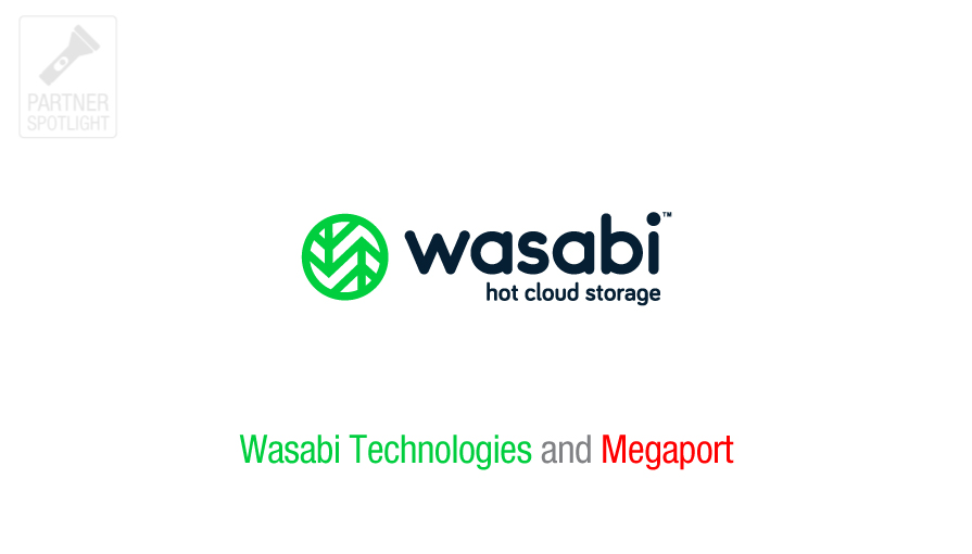 Wasabi hot cloud storage