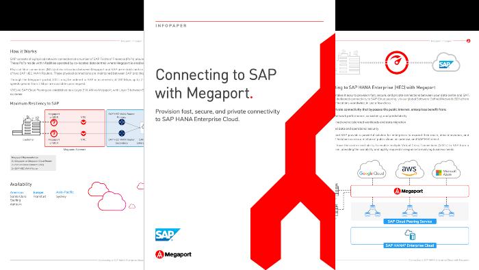 SAP Infopaper Thumbnail